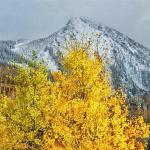 Frequent contributor Trevor Bona snapped this photo of the peak. Follow him @trevor_bona.