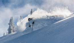 Woody in the photo of the season so far! Photo: Dave Kozlowski