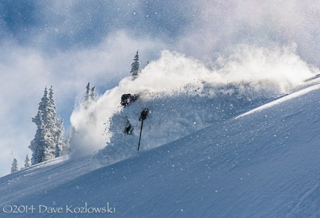 Woody in the photo of the season so far! Photo: Dave Kozlowski