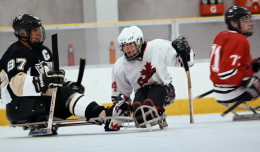 sledgehockey_nhl